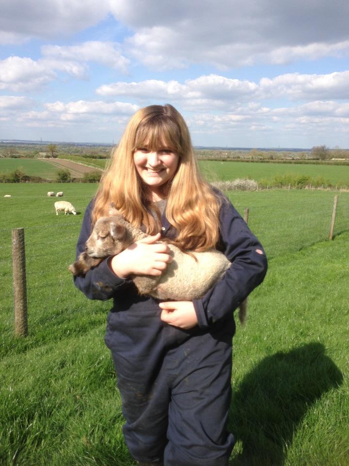 Lambing Experience
